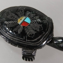 Turtle by Terry Leonard