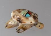 Turtle by Fabian Homer