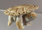 Turtle by Maxx Laate