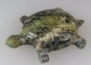 Turtle by Randolph Latone