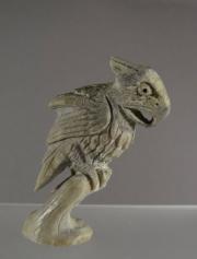 Parrot by Ruben Najera (view 1)