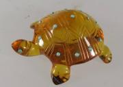 Turtle by Laura Quam