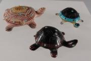 Turtles by Laura Quam