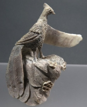 Peacock by Ruben Najera