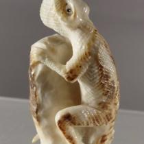 Iguana by Estaban Najera