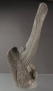 Eagle Dancer (back) by Estaban Najera