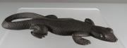Lizard by Fabian Cheama