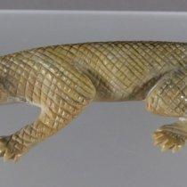 Lizard  by Lance  Cheama