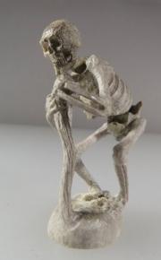 Human Skeleton by Estaban Najera (view 2)