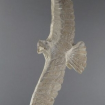 Eagle by Pernell Laate