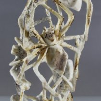 Spiders by Louis Malie, Jr