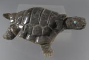 Turtle by Herbert Him