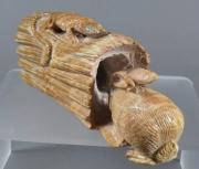Rabbit, entering log by Arvella Cheama (view 1)