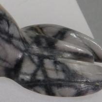 Seal by Karen Zunie